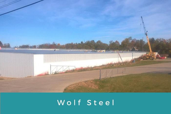 Wolf Steel